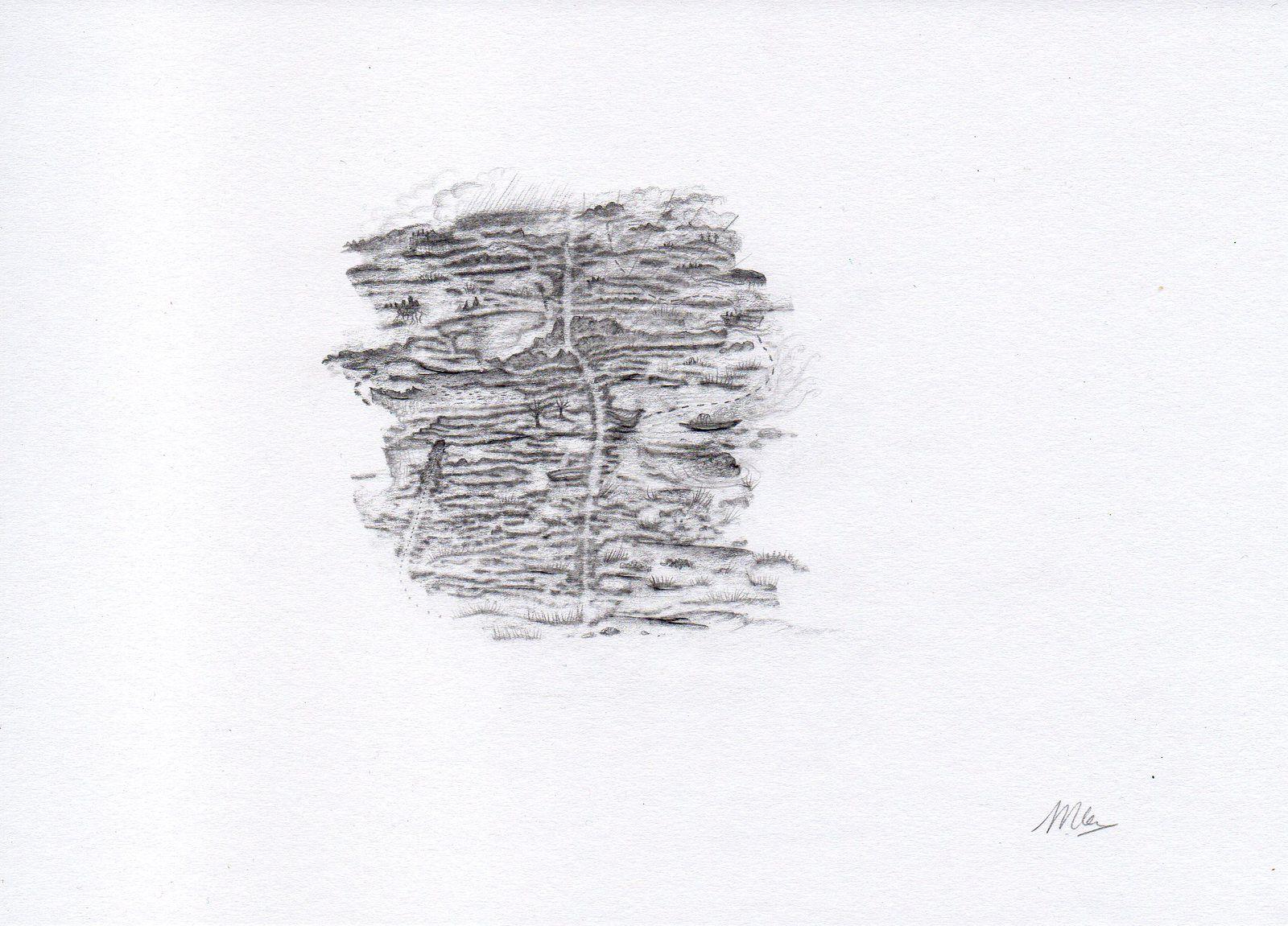 Série Nuits xylophages, mine graphite sur papier, 15x22cm, 2017
