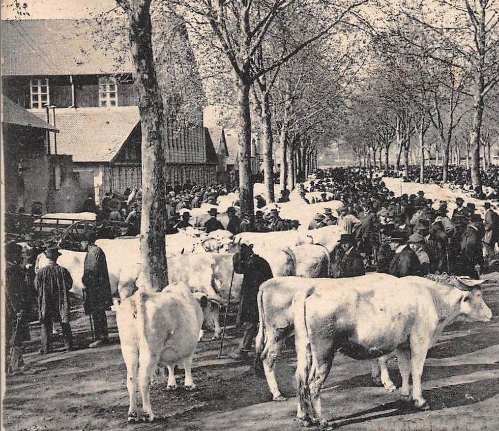 Le hall de l'agriculture du côté du cours de Bercy