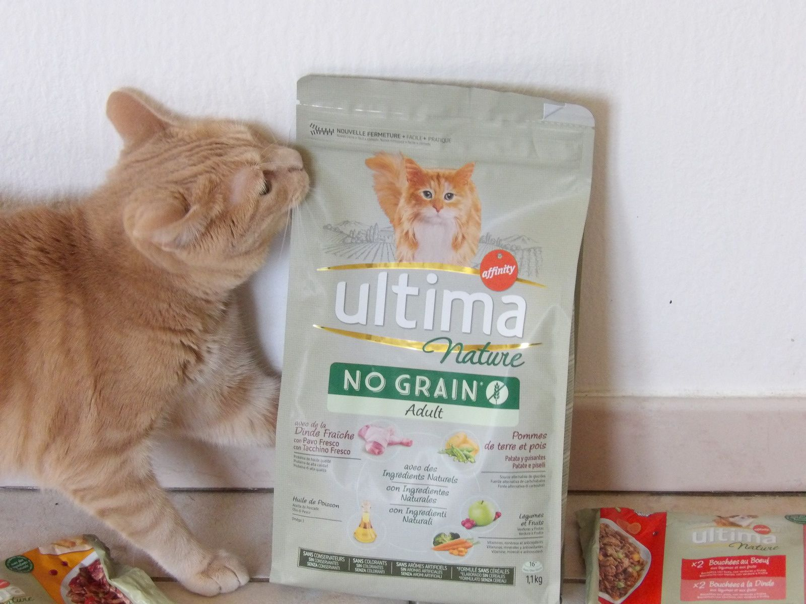 Ultima alimentation chat