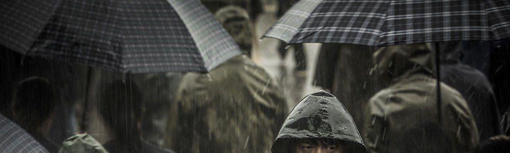 Notes d'été (2): les films de juillet (American Nightmare 4, Une pluie sans fin)