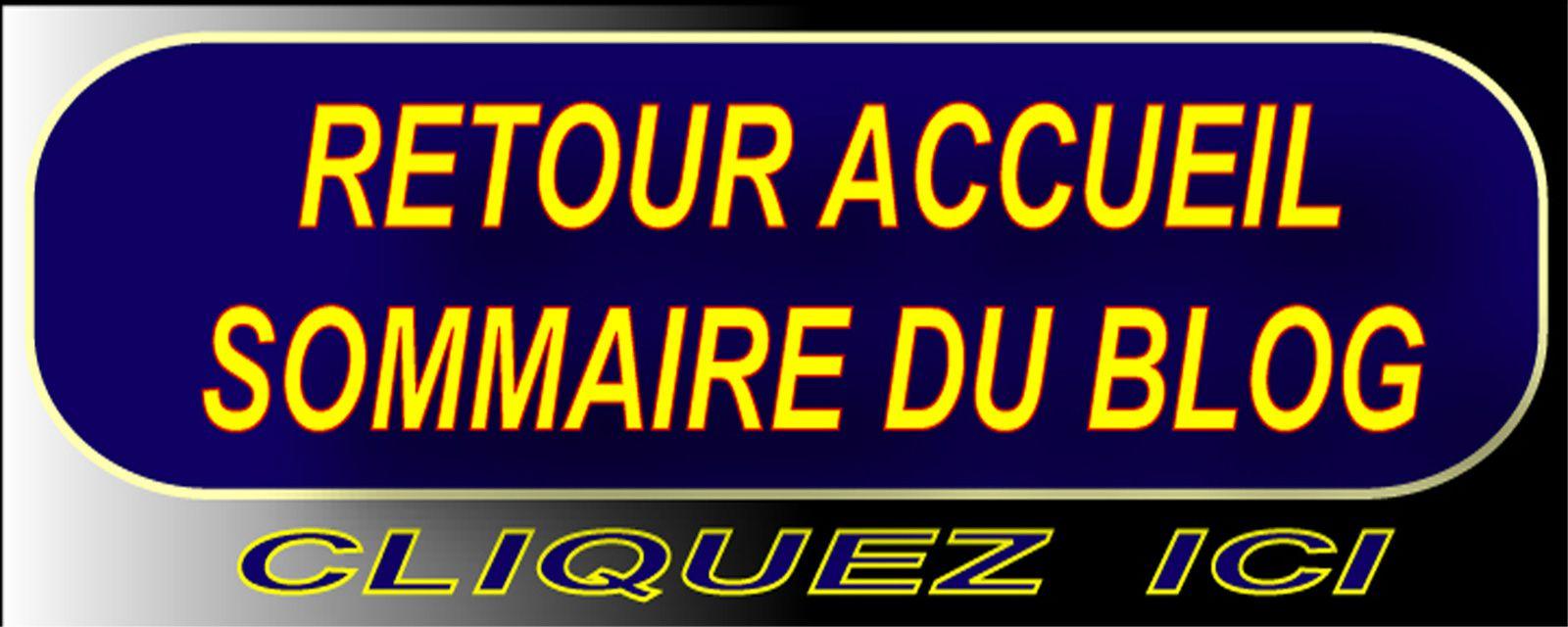 retour-sommaire-blog-dranreb0434