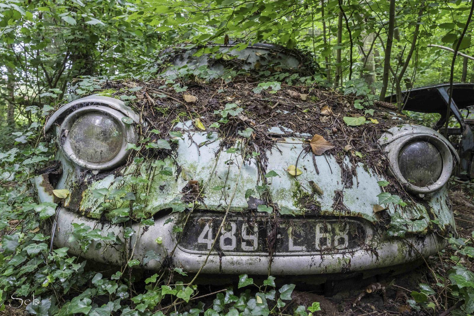 Urbex Alsace, Cimetière de voitures