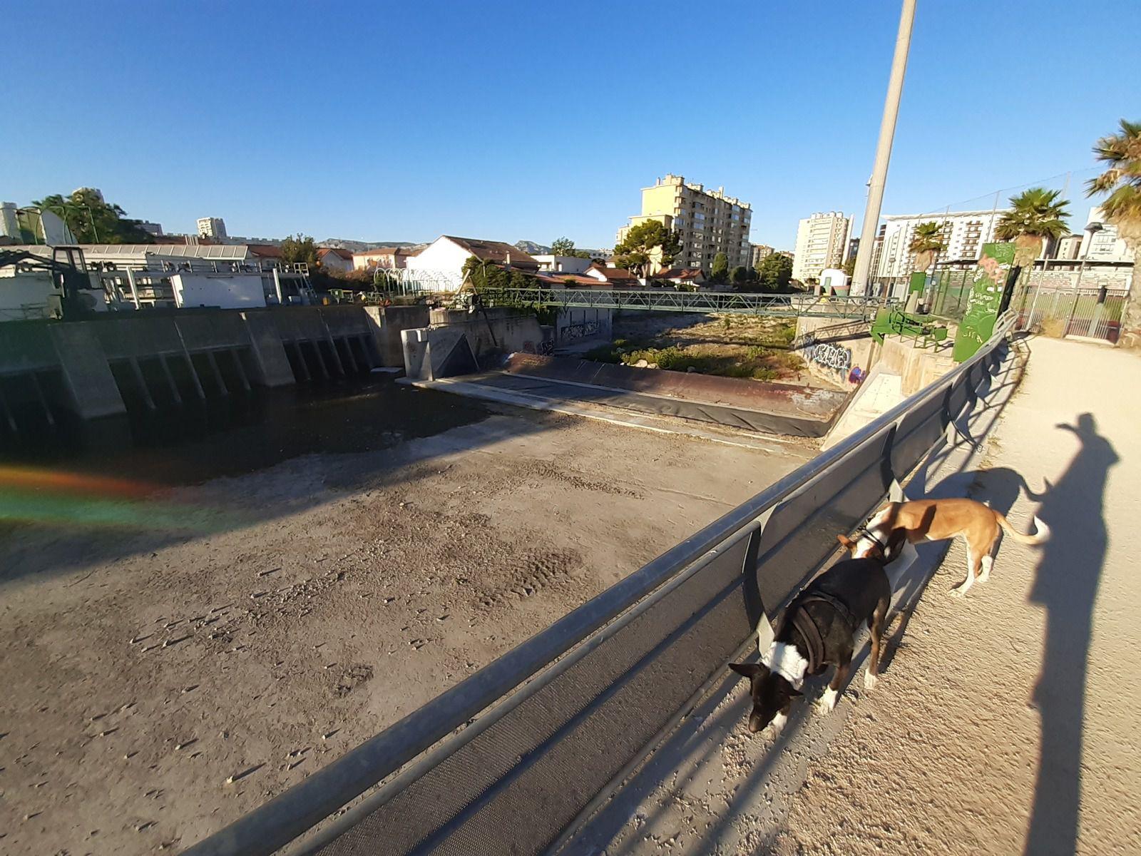 La station d'épuration et son barrage mobile (baissé ce jour-là)