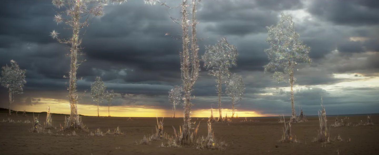 Annihilation est un film avec des effets visuels vraiment réussis. Ils permettent d'illustrer une étrange dimension poétique et métaphysique du film et de la vie et c'est une vraie qualité du film