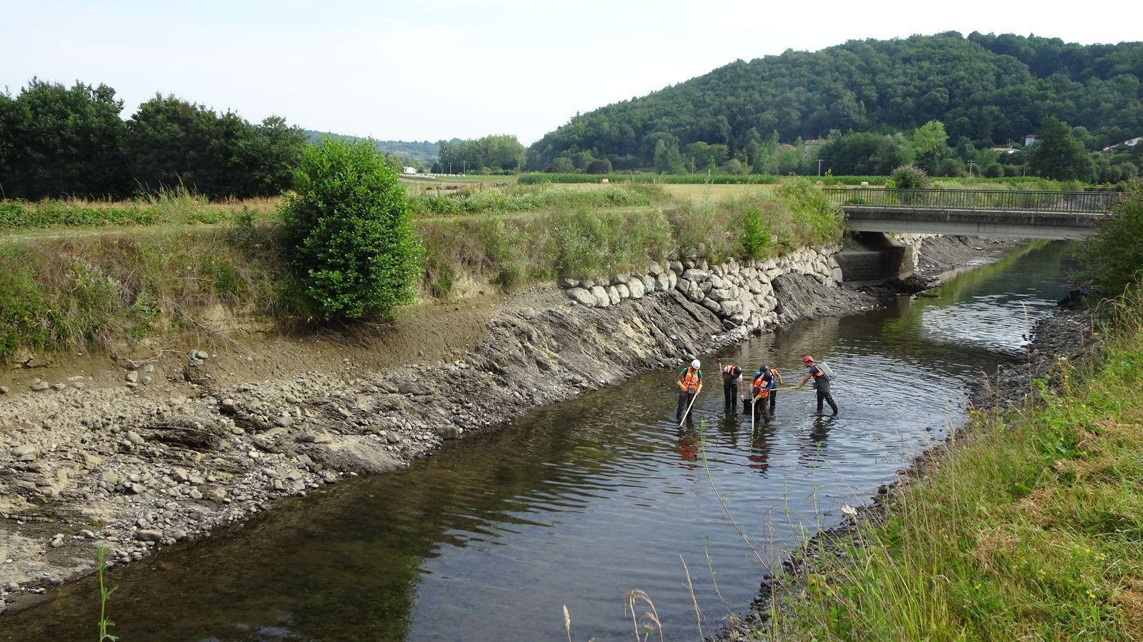 Canal d'amenée de l'usine des Salins du Midi