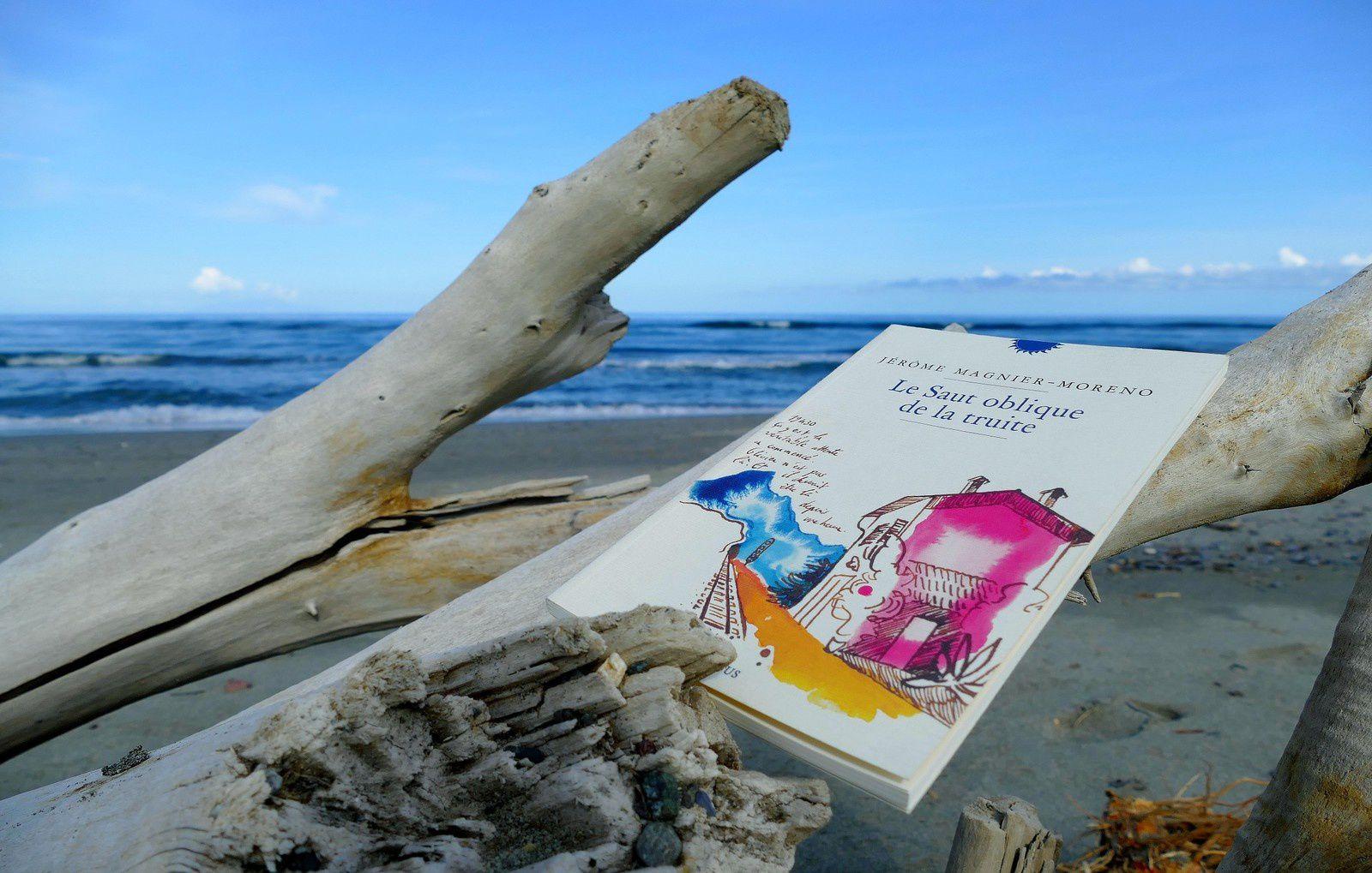 Retour de Corse....de la réalité au roman...