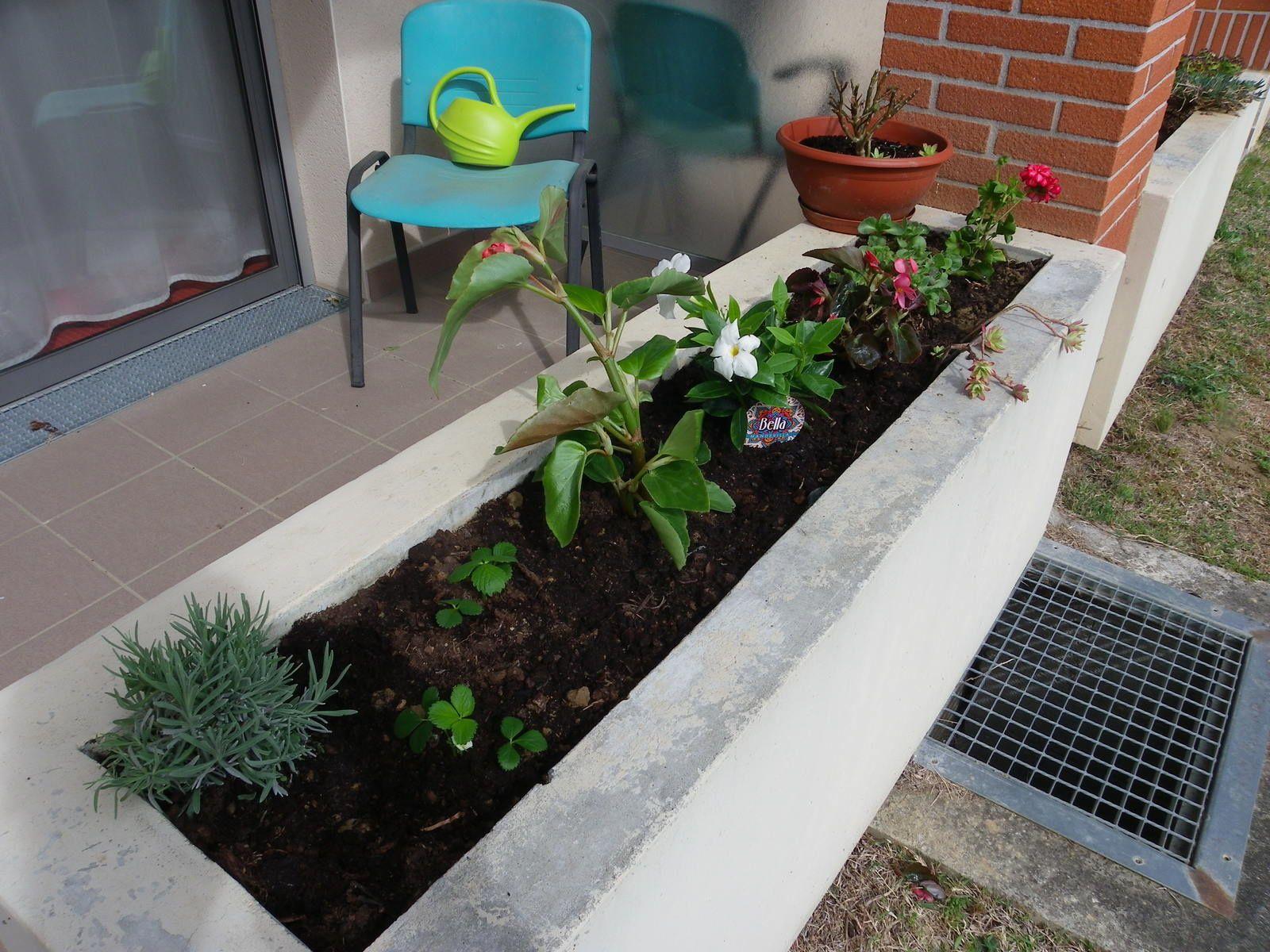 Fleurissement des jardinières