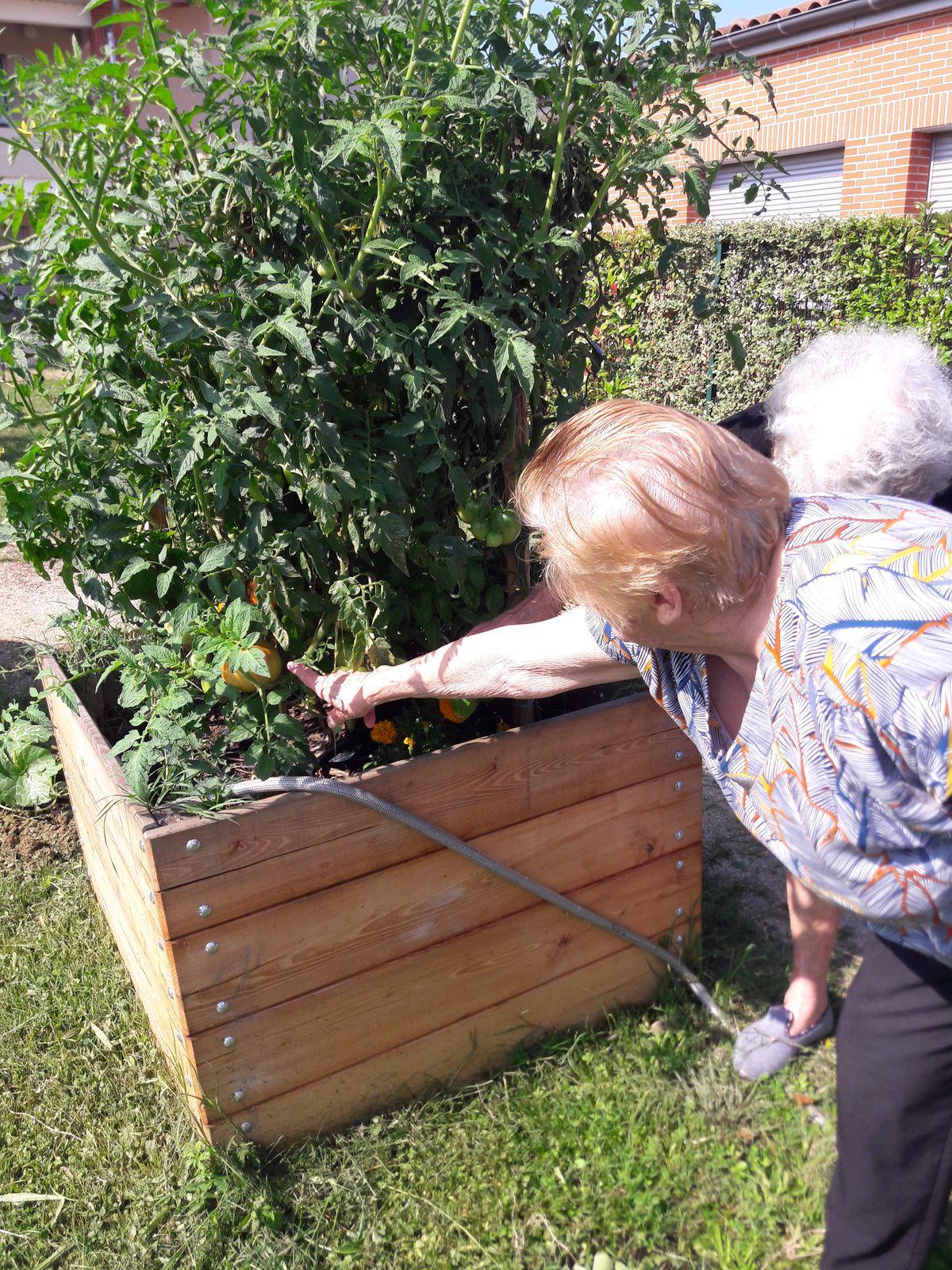 Jardinage au PASA