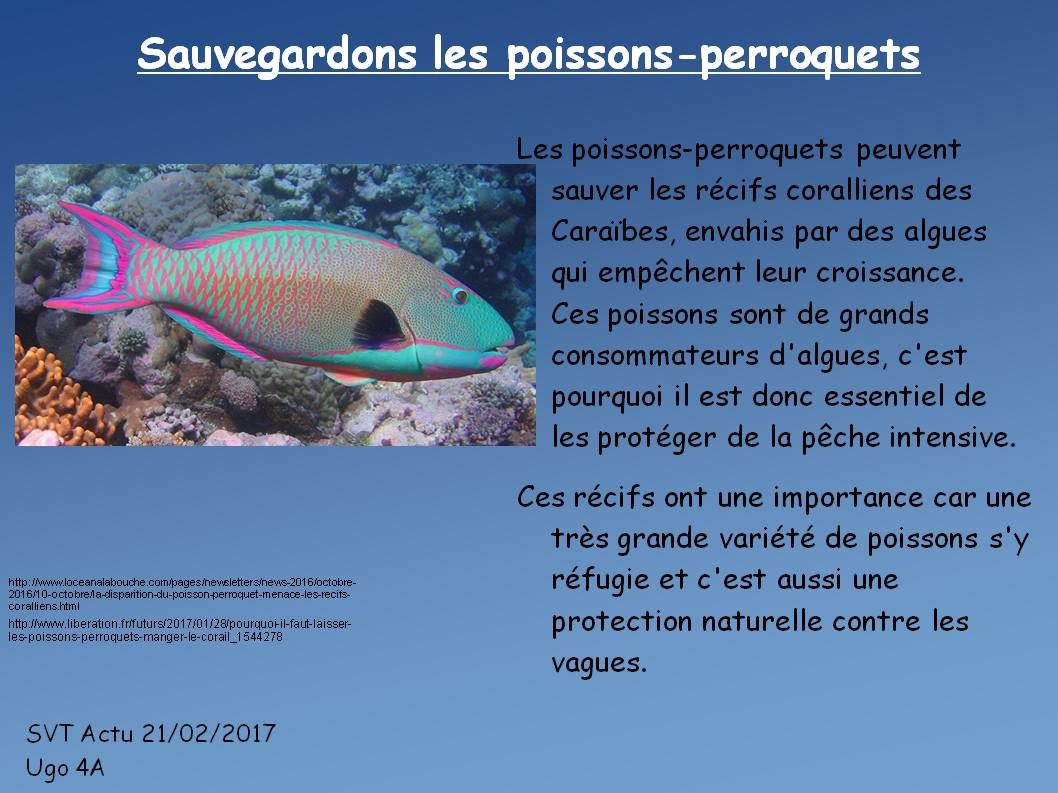 Poisson
