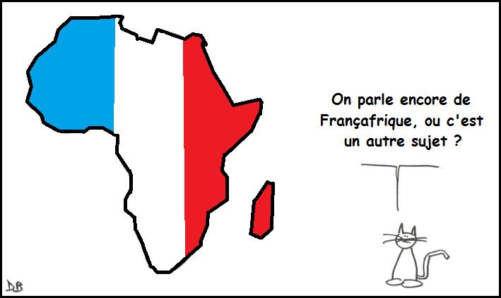 Pourquoi dire que l'équipe de France est « africaine » est une profonde bêtise ?