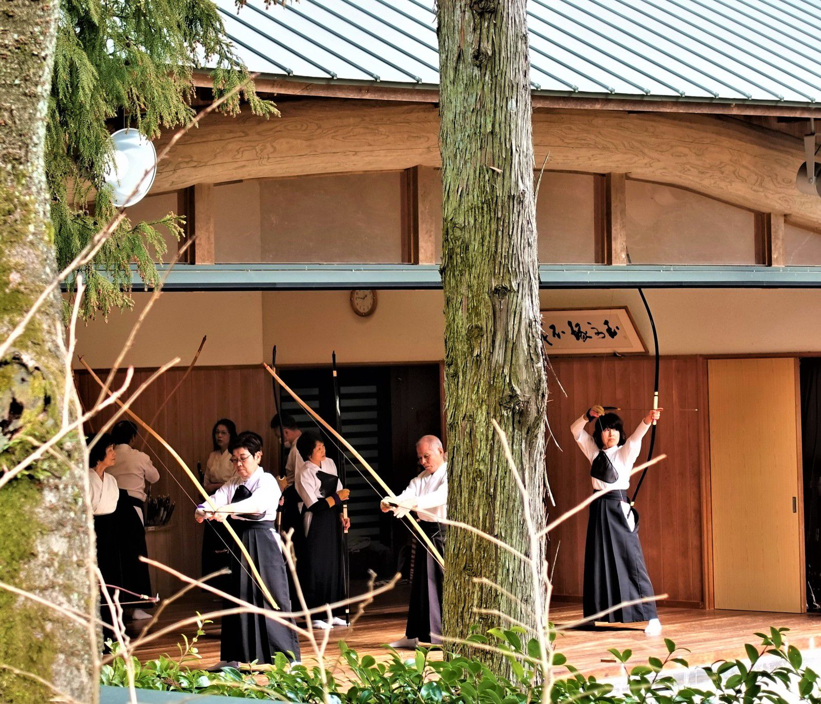 Le sanctuaire: Tsubaki Ookami Yashiro