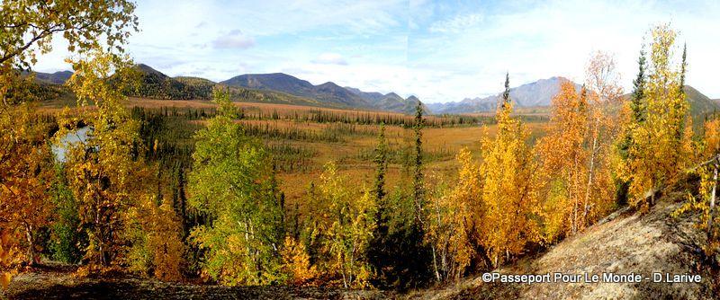 La rivière Porcupine sous les couleurs de l'automne