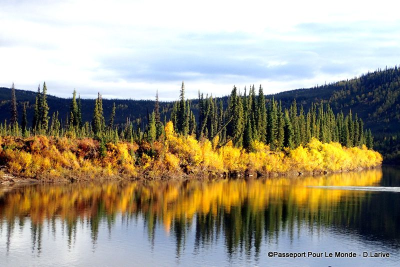 La rivière Porcupine aux couleurs de l'automne