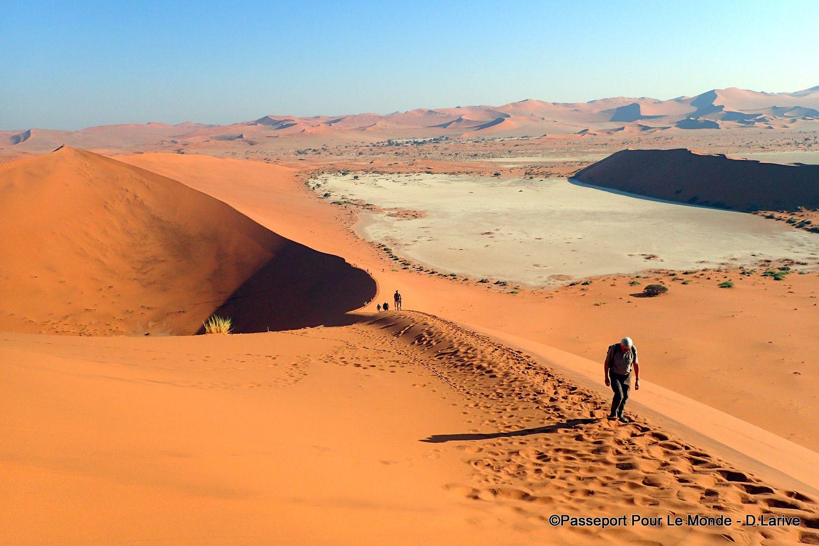 LE DESERT DU NAMIB : UN JOYAU ENTRE CIEL ET MER