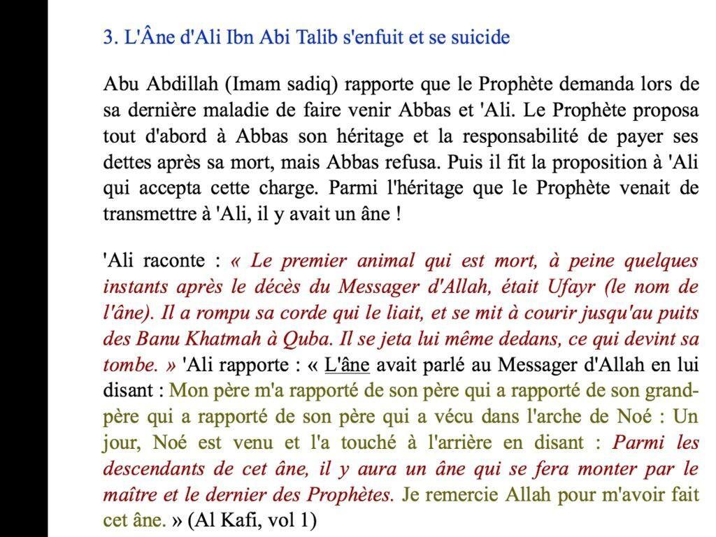 L'âne d'ali ibn abou talib s'enfuit et se suicide !