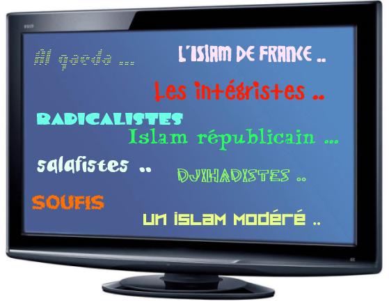 Y a t-il un seul ou plusieurs vrais Islams ?