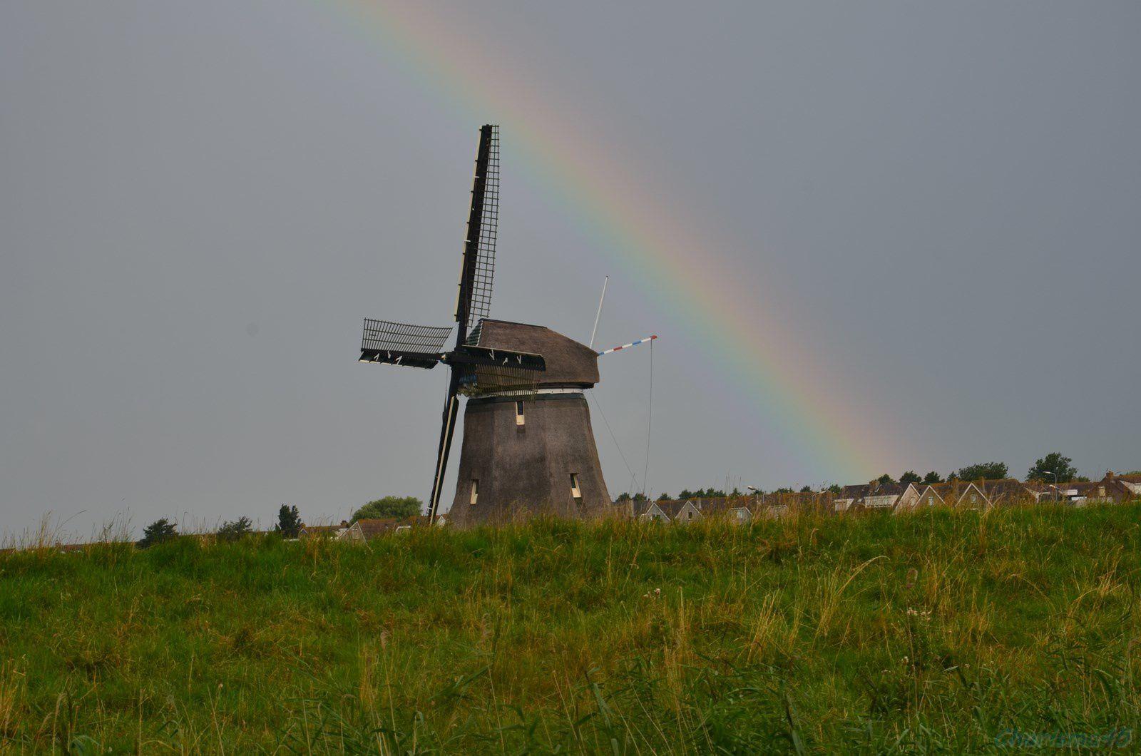 Moulin à Volendam (Pays bas en camping-car)