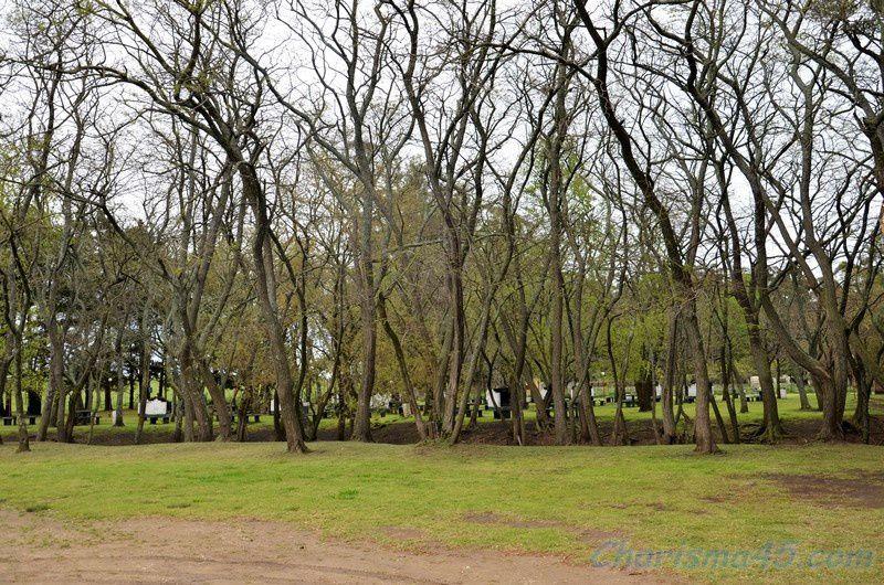 Balcarcé (Argentine en camping-car)