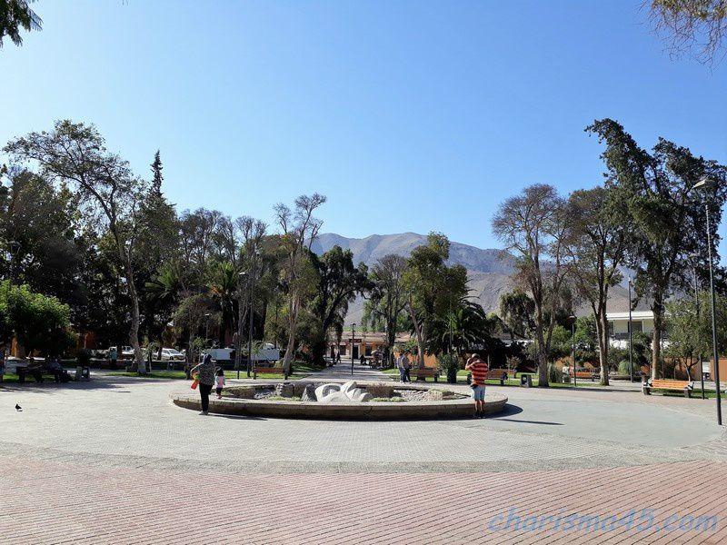 Vicuna (Chili en camping-car)