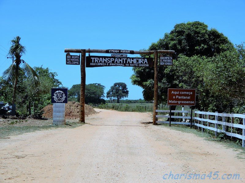 Pantanal nord en camping-car (Brésil en camping-car)