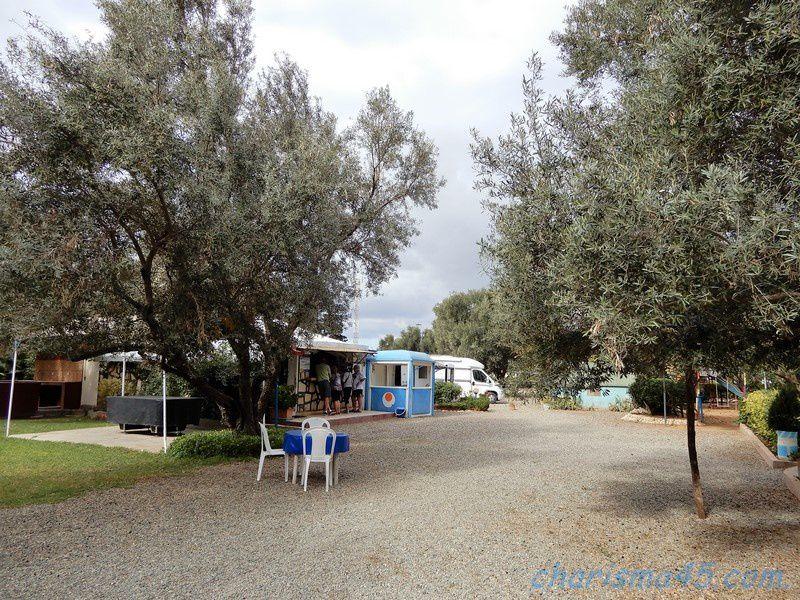 Camping des oliviers Ounara (Maroc en camping-car)