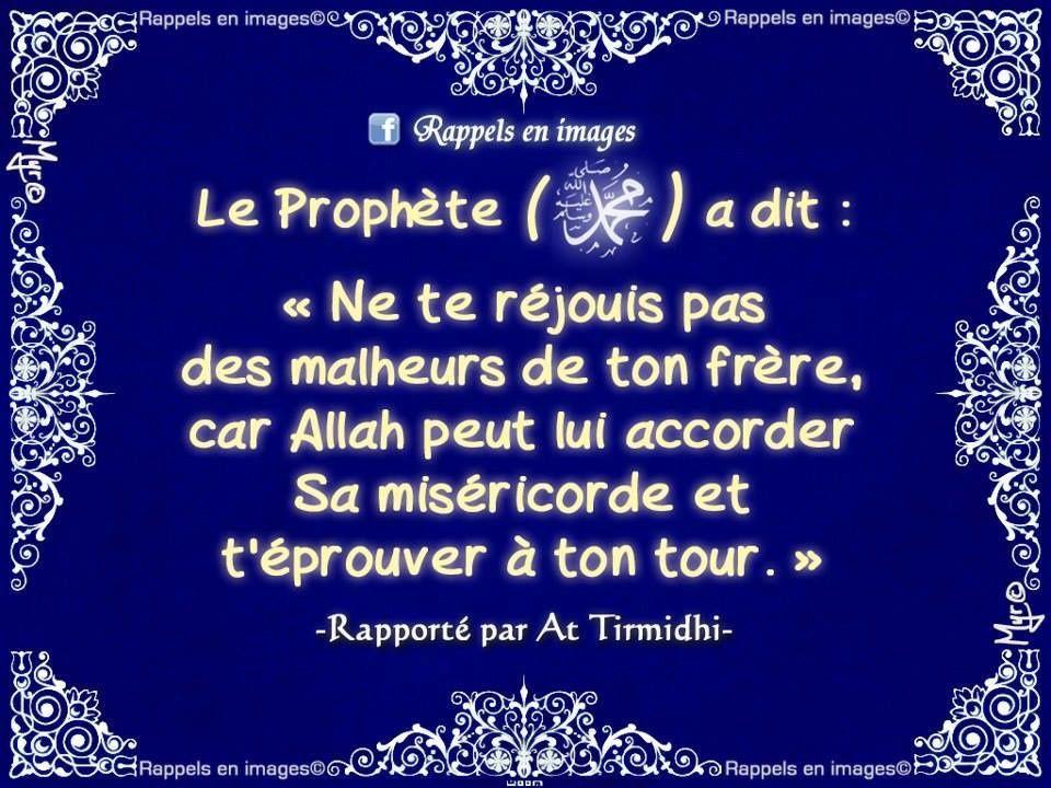 Le Vrai frère en islam