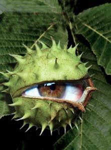 Les causes et les effets réels du mauvais œil