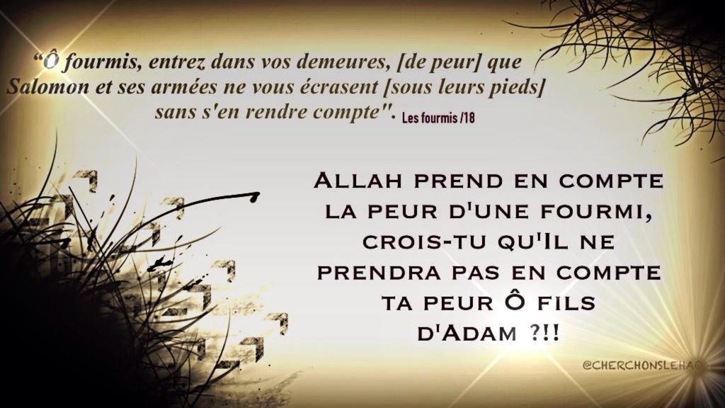 « Adore ton Seigneur et place ta confiance en lui»