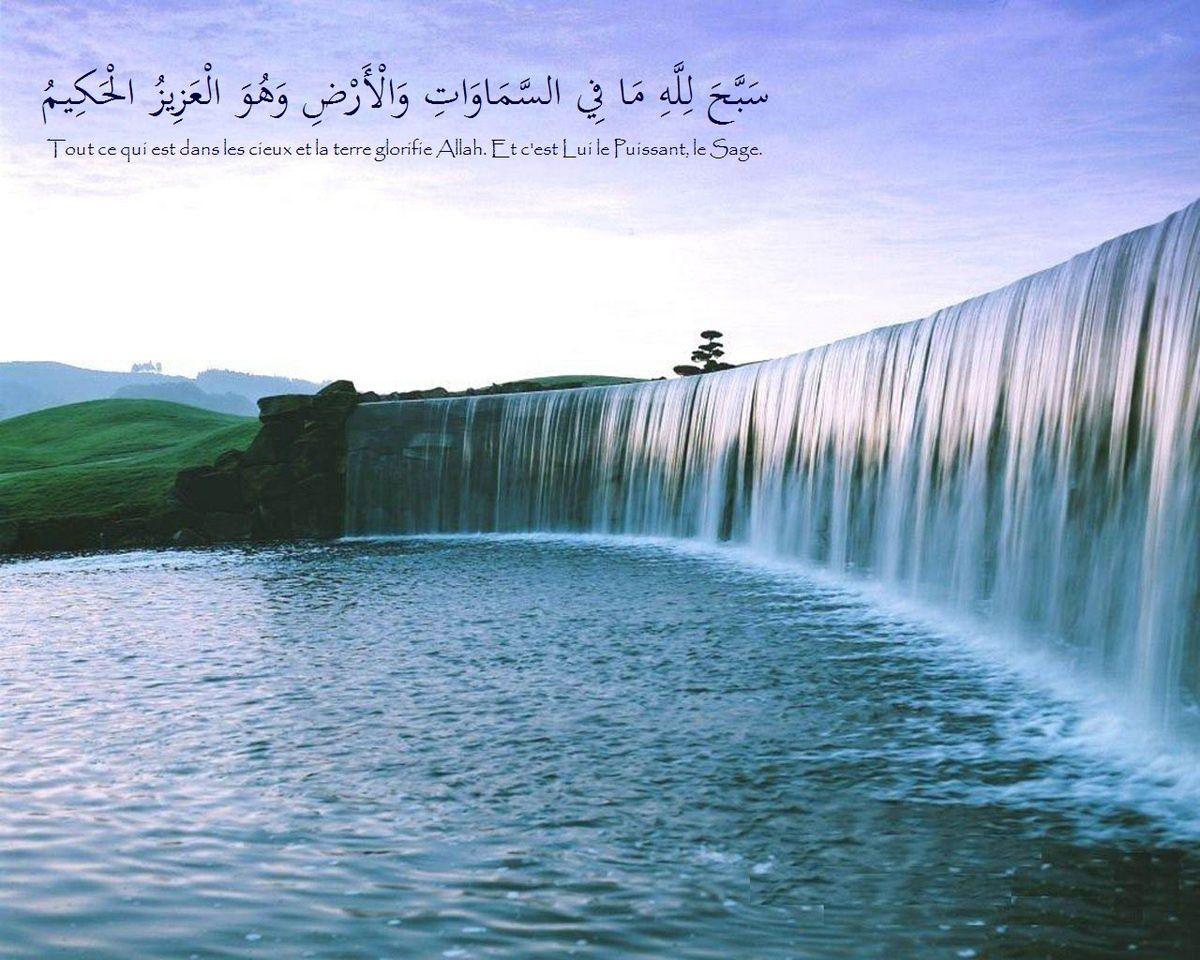 L'obligation qui incombe dans l'obéissance à Allâh