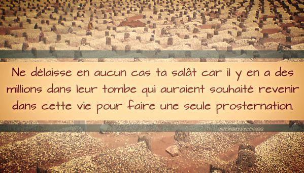 """""""Notre Seigneur, Nous avons vu et entendu, renvoie-nous donc afin que nous puissions faire du bien"""""""