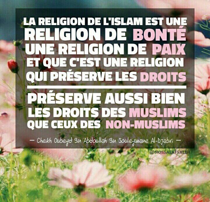 «Ces événements, tels que attaques à la bombe, les kidnappings et assassinats, ne font pas partie de l'islam et n'ont rien à voir avec !»