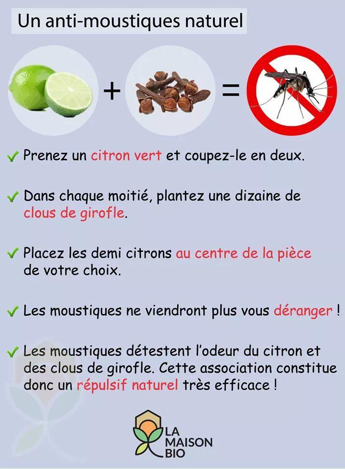 Protection contre les moustiques