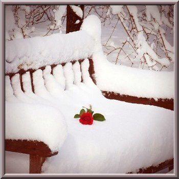 Richesses d'hiver