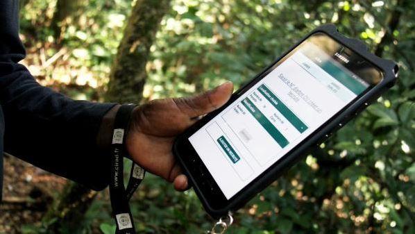En Centrafrique, un dispositif de près de quarante ans pour comprendre la forêt