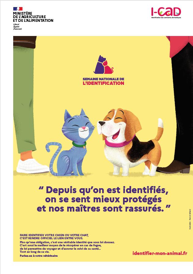 Identifier, c'est protéger son animal !