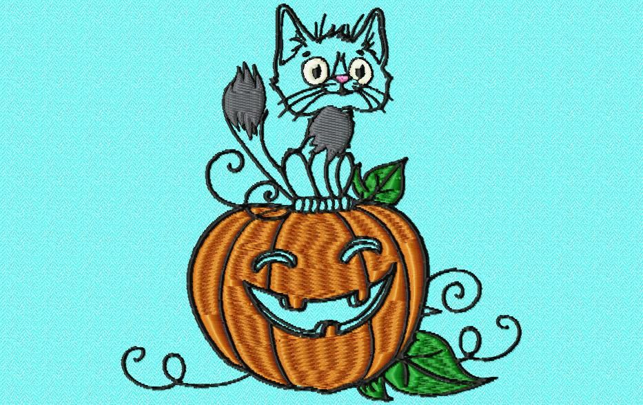 le chat Halloween