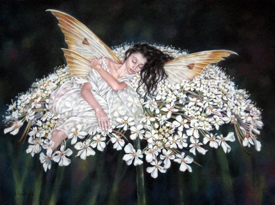 Anges & Papillons