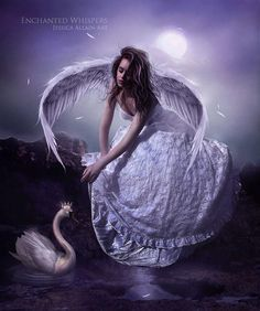 Anges...