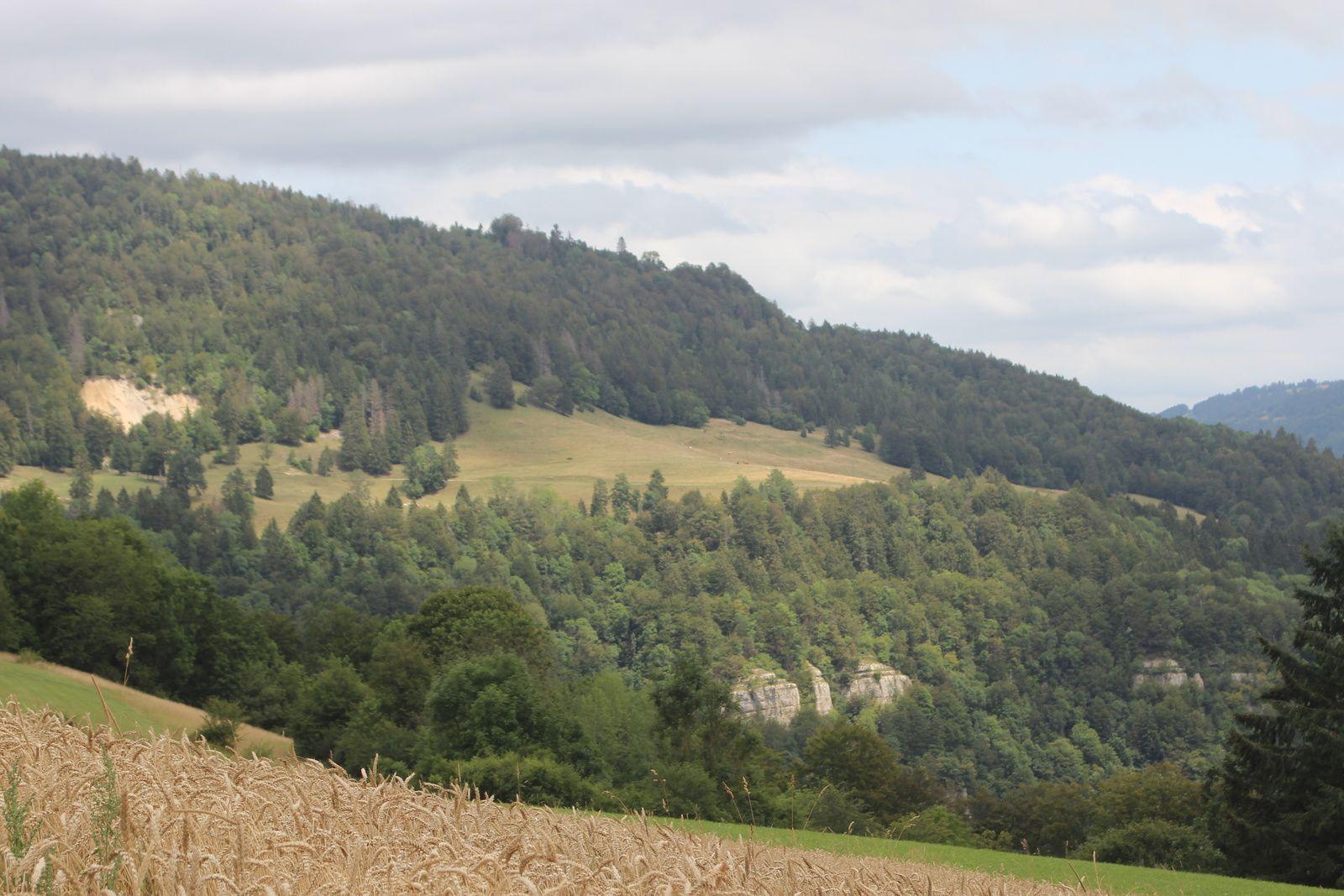 En passant par Froidevaux ( CH )