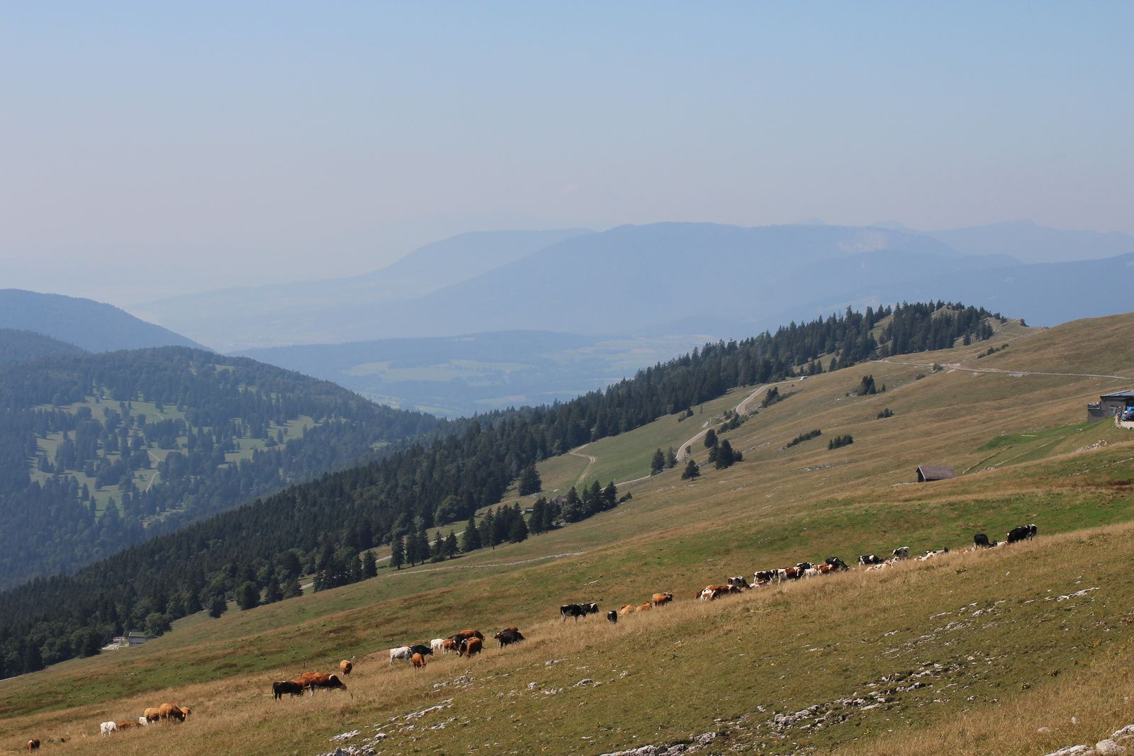 A CHASSERAL le 26/08/19