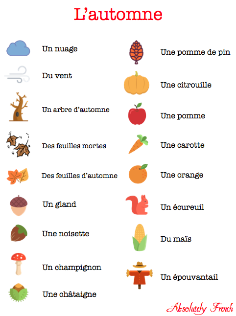 automne, autumn, saison, citrouille, halloween, nut, soleil, article, Absolutely French, vocabulaire, vocab, vocabulary, french, français, learn french, apprendre le français, cours de français, expats, expat, expatriates, expatriés