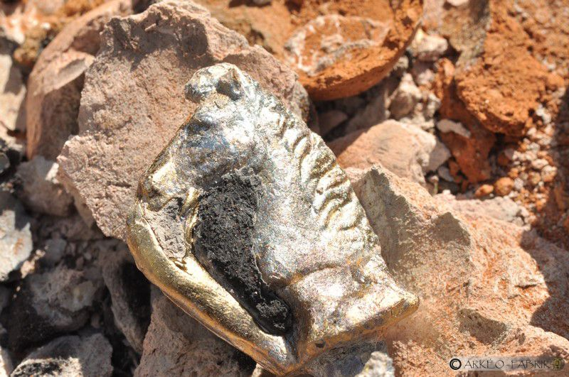 Petite tête de cheval de Sanxay (86) juste démoulée.