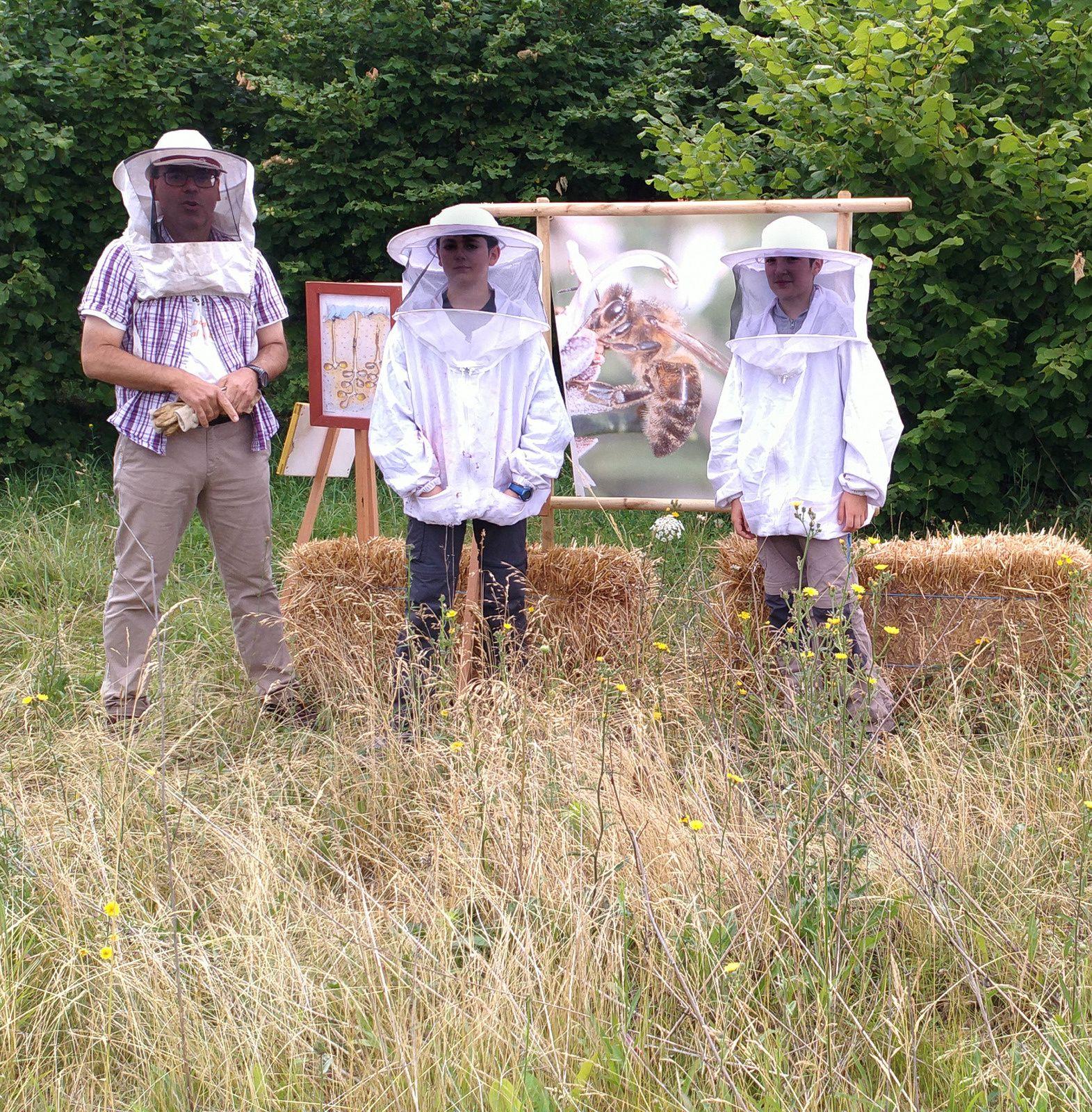 Le rucher-expo
