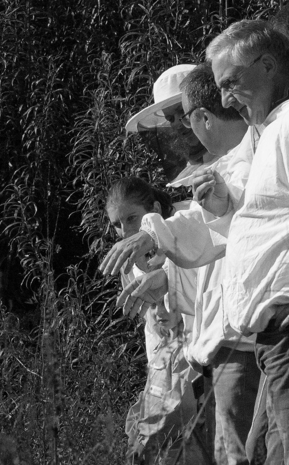 Un réservoir de biodiversité, c'est le vocabulaire le plus adapté pour les parcelles de l'espace naturel sensible des Hautes Bruyères. Aujourd'hui c'est l'Anax empereur qui a volé la vedette à tous les habitants de la mare.