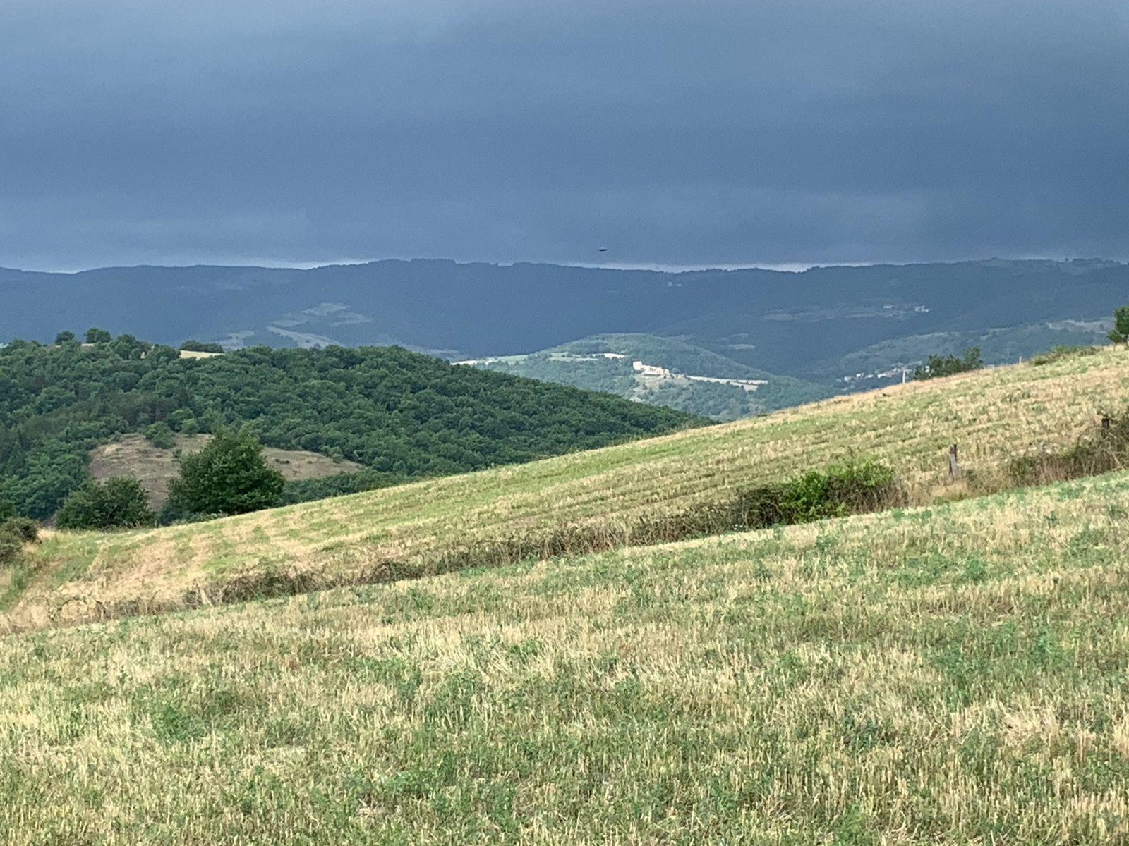 Voyage en Auvergne : une vie d'oiseaux