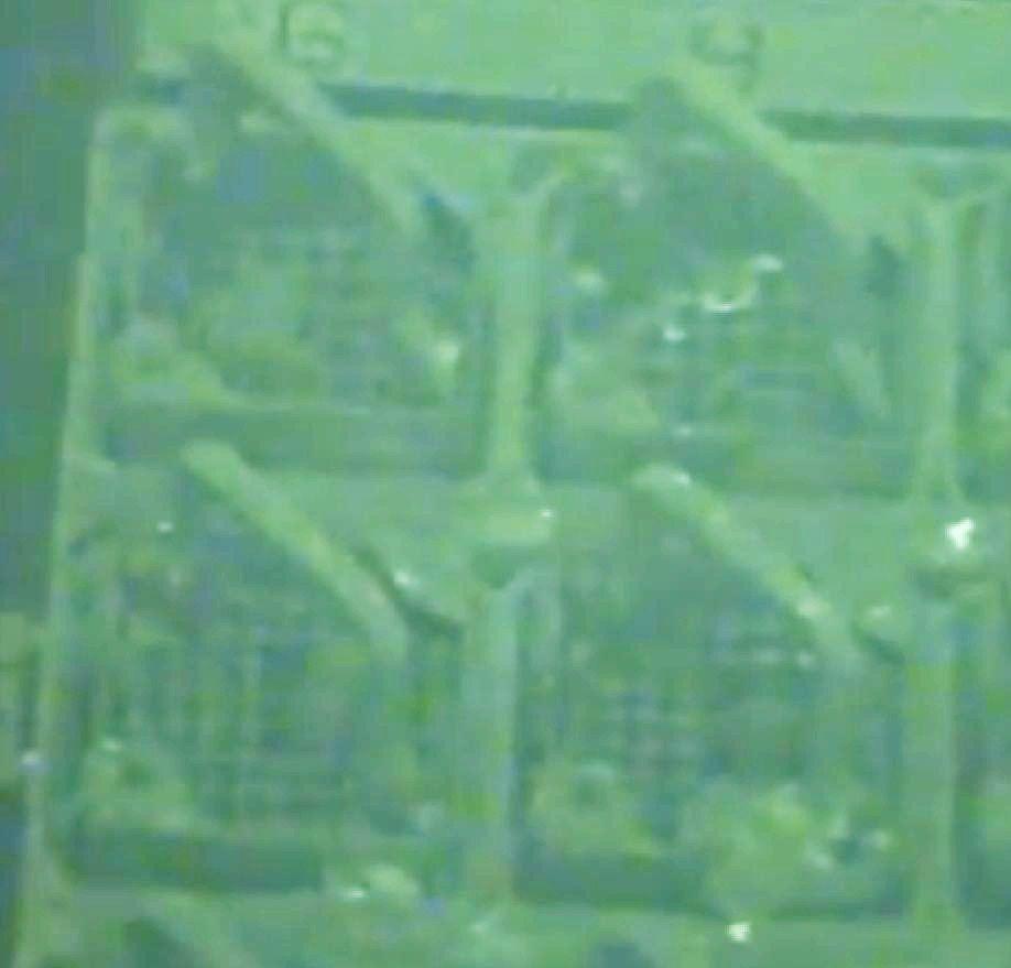 Cet élément est la partie haute que l'on voit par exemple dans ces assemblages de la piscine du réacteur n°4.