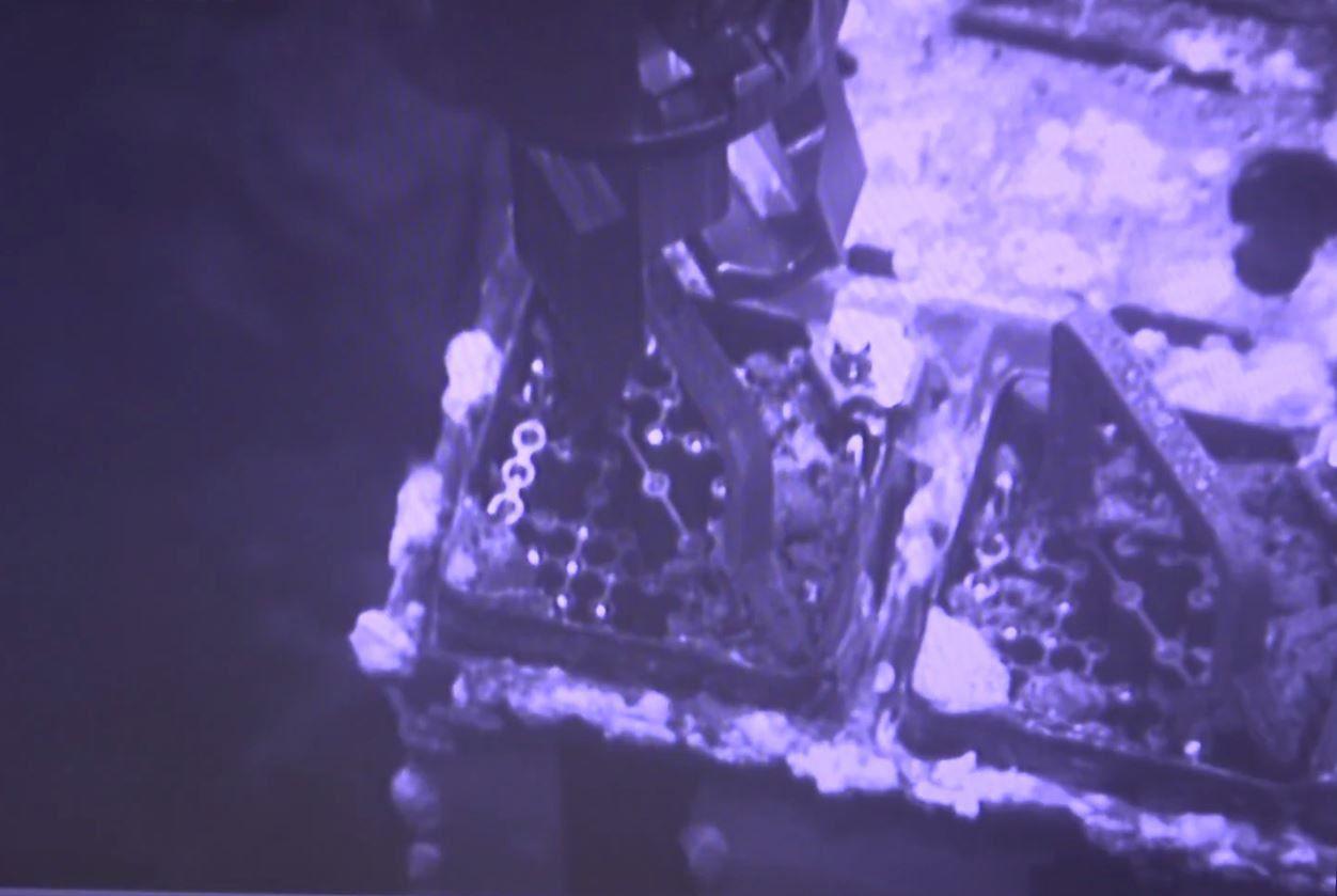 Retrait d'un assemblage du réacteur 3 (capture d'écran vidéo Tepco)