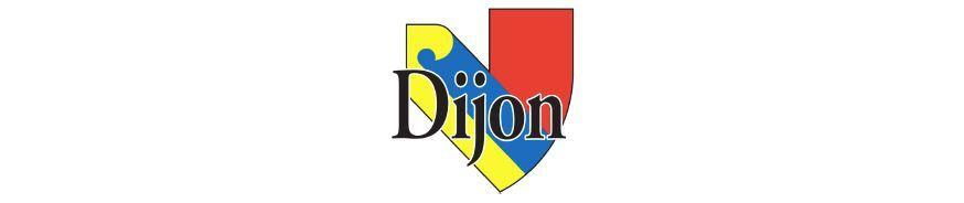 Samedi 8 septembre 2018 - La course du Bien Public - Dijon