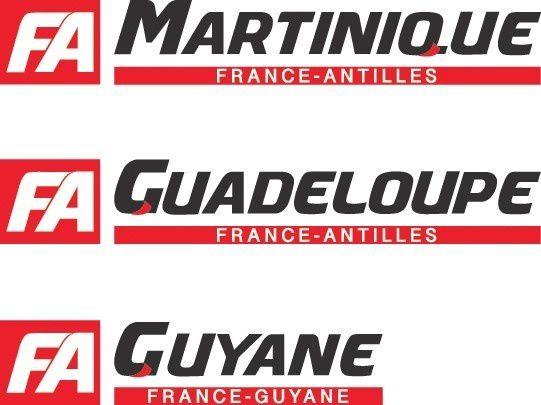 (MàJ) Xavier NIEL + France-Antilles : C'est officiel !