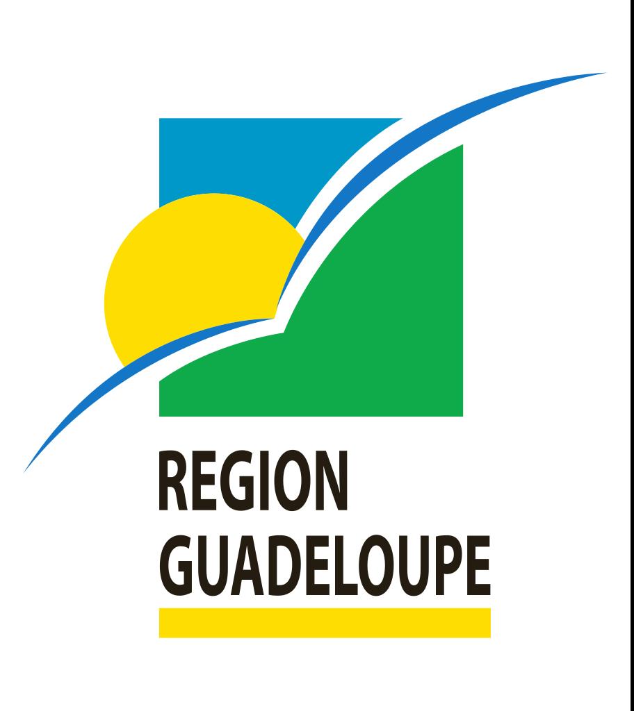 [en bref] Région Guadeloupe : Bientôt un Wi-Fi territorial ?